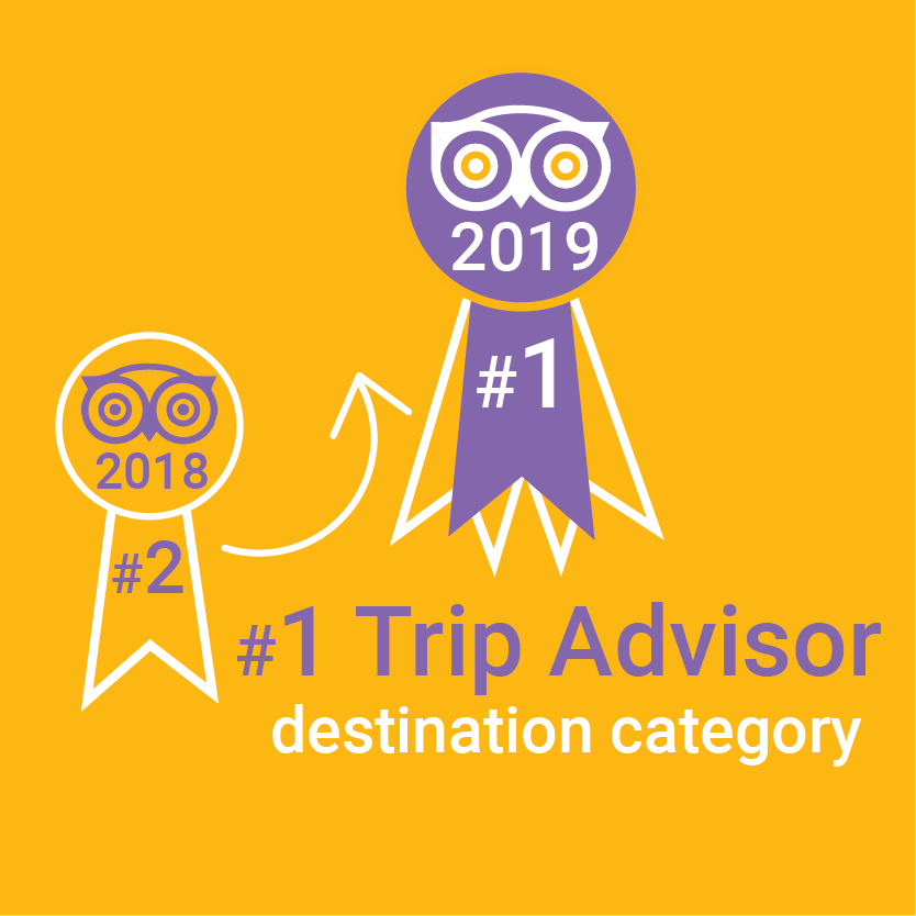 Number one Trip advisor destination category illustration