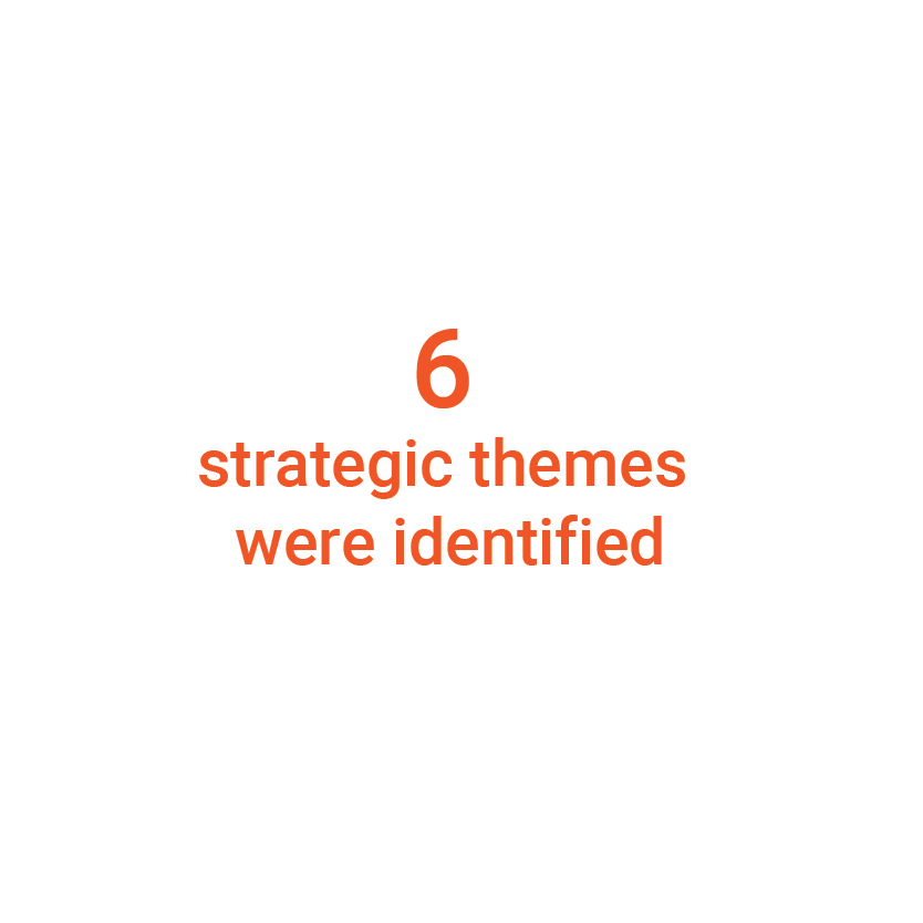 Strategic themes were identified